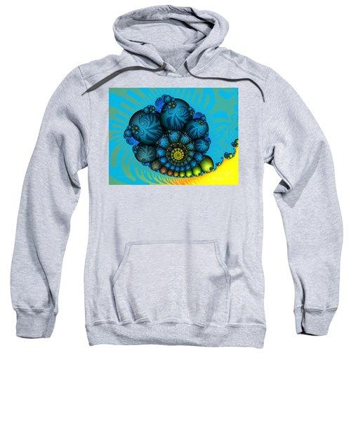 Snail Mail-fractal Art Sweatshirt