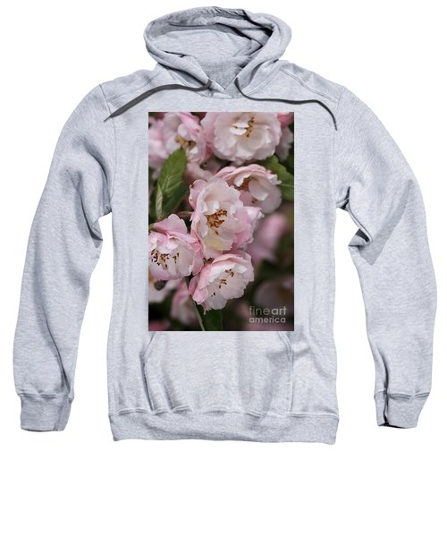 Soft Blossom Sweatshirt