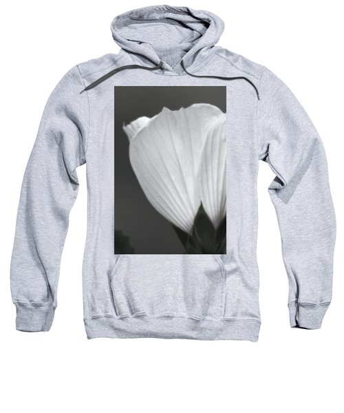 Softly Now Sweatshirt