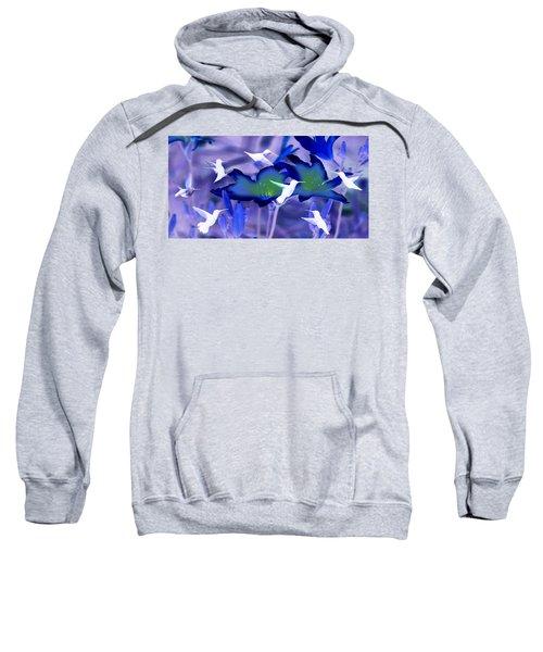 Spirit Of The Humming Bird Sweatshirt