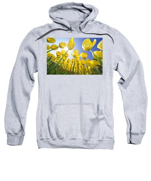 Spring Flowers 5 Sweatshirt