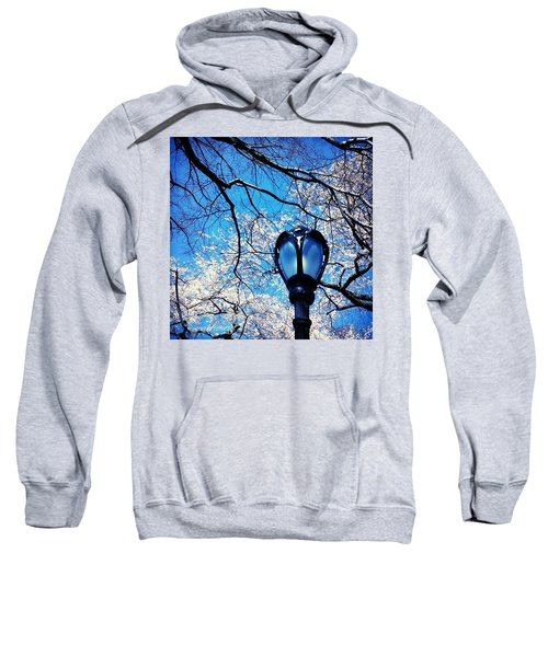 Spring In Central Park New York Sweatshirt by Anna Porter