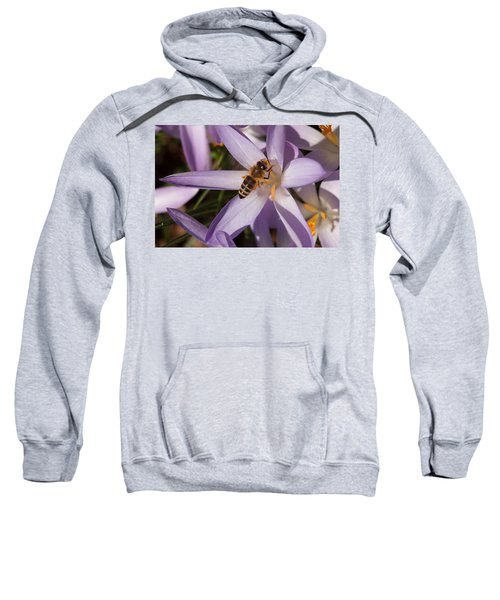 Spring's Welcome Sweatshirt
