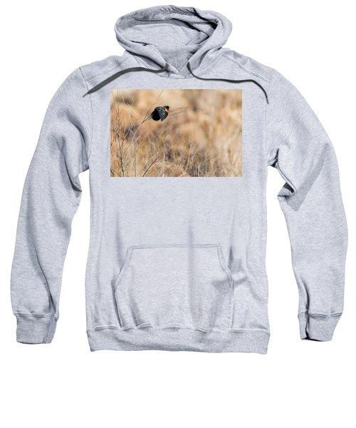 Springtime Song Sweatshirt by Bill Wakeley