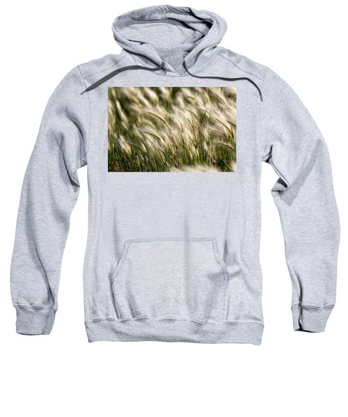 Squirrel Grass Sweatshirt