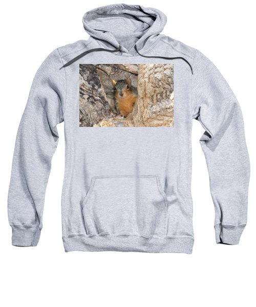 Squirrel In The Hole Sweatshirt