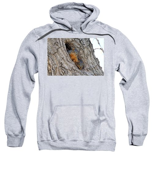 Squirrels In The Hole Sweatshirt