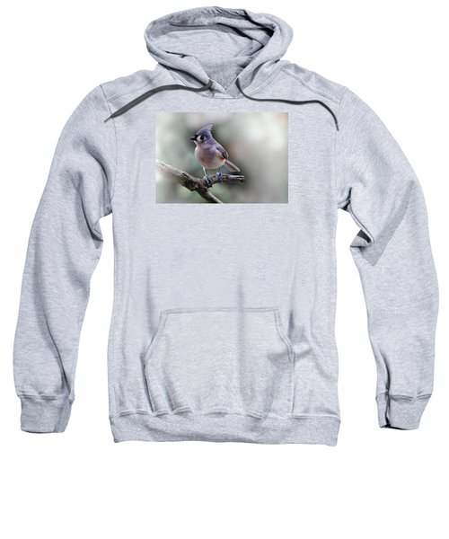 Sring Time Titmouse Sweatshirt