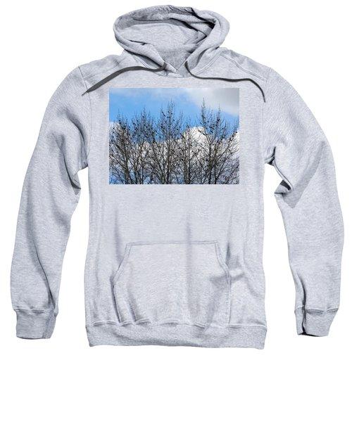 Starlings In The Cottonwoods Sweatshirt