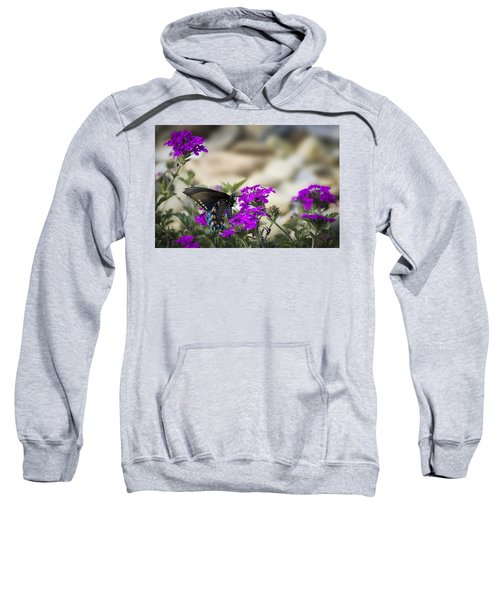 Still Beautiful Swallowtail Sweatshirt