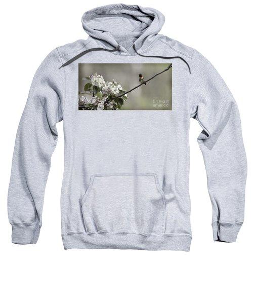 Stilllife Sweatshirt
