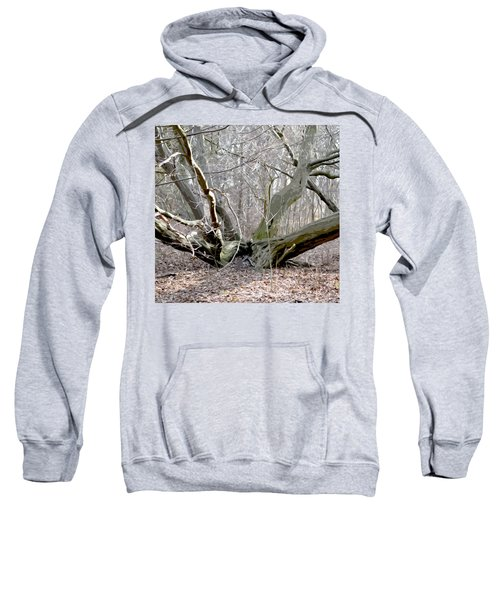 Struck By Lightning - Grafical Sweatshirt