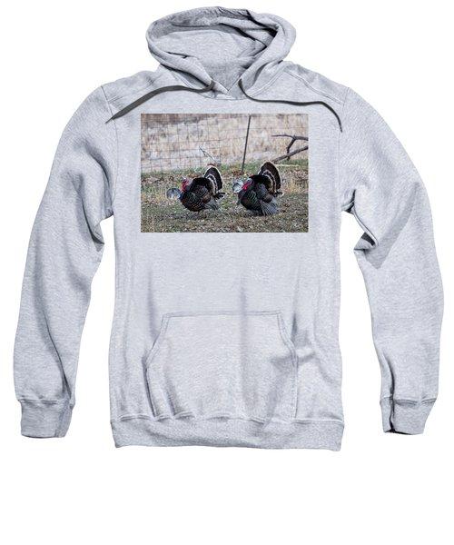 Strutting Turkeys Sweatshirt
