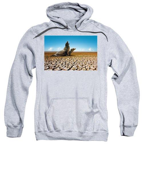 Suffering Seals Sweatshirt