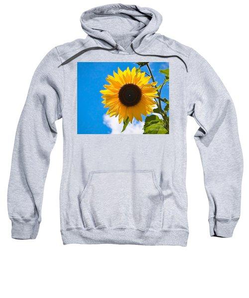 Sunflower And Bee At Work Sweatshirt