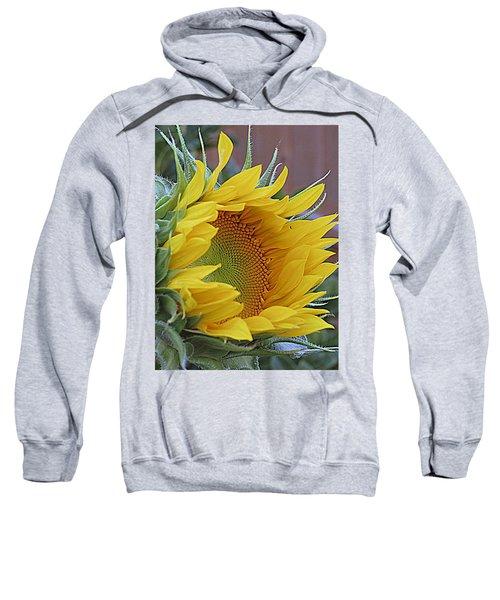 Sunflower Awakening Sweatshirt