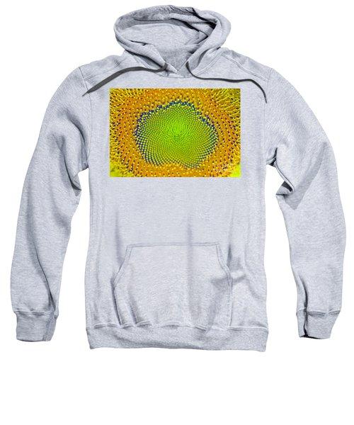 Sunflower Center Sweatshirt