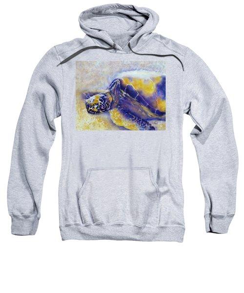 Sunning Turtle Sweatshirt