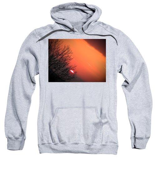 Sunrise And Hibernating Tree Sweatshirt