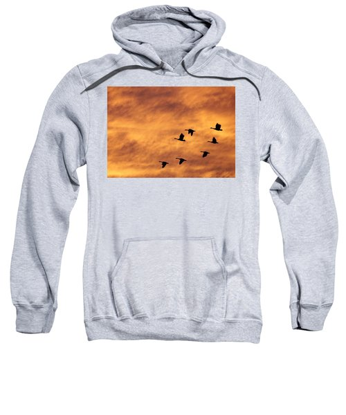 Sunrise Flight 2 Sweatshirt