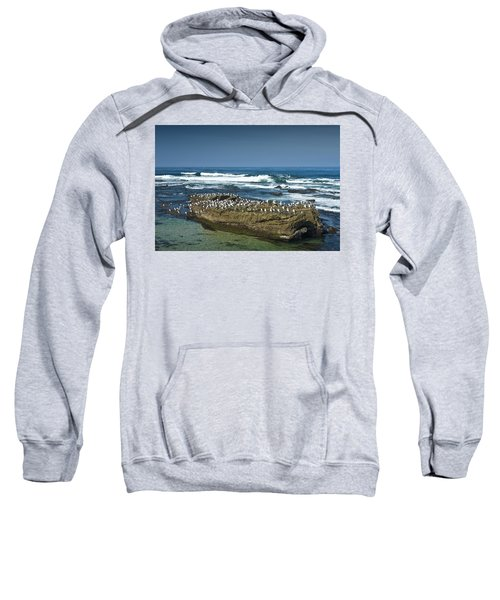 Surf Waves At La Jolla California With Gulls Perched On A Large Rock No. 0194 Sweatshirt