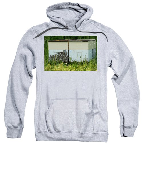 Sweatshirt featuring the photograph Swarming by Kim Pate