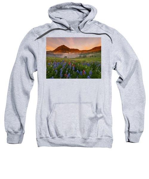 Sweeping Gaze Sweatshirt
