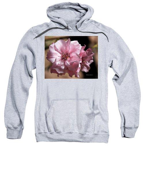 Sweet Blossoms Sweatshirt