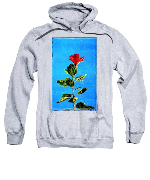 Tall Hibiscus - Flower Art By Sharon Cummings Sweatshirt