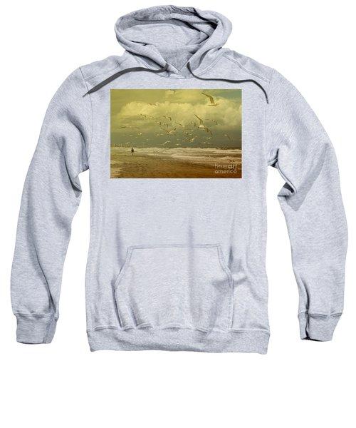Terns In The Clouds Sweatshirt