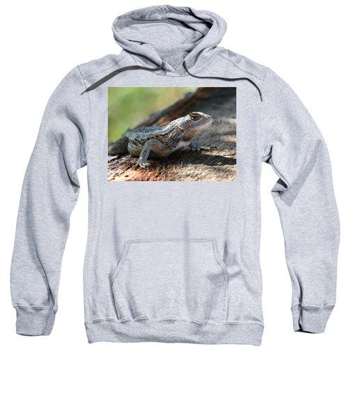 Texas Lizard Sweatshirt