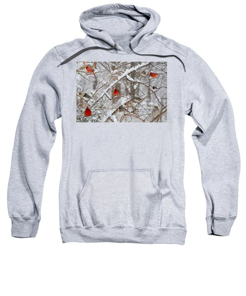 The Cardinal Rules Sweatshirt
