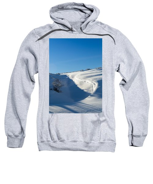 The Colors Of Snow Sweatshirt