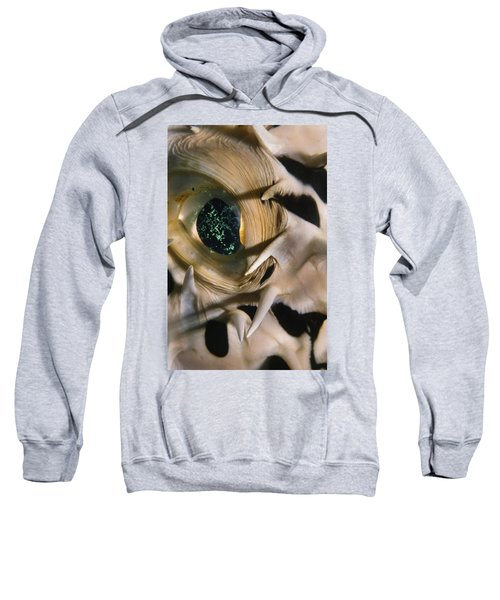 The Eye Of A Pufferfish Sweatshirt