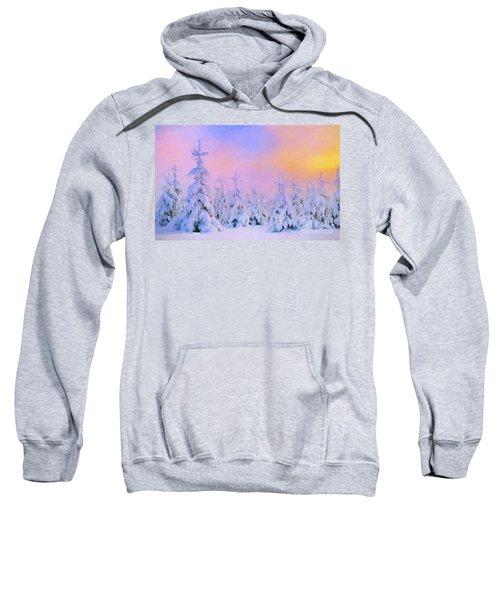 The February Sun Sweatshirt