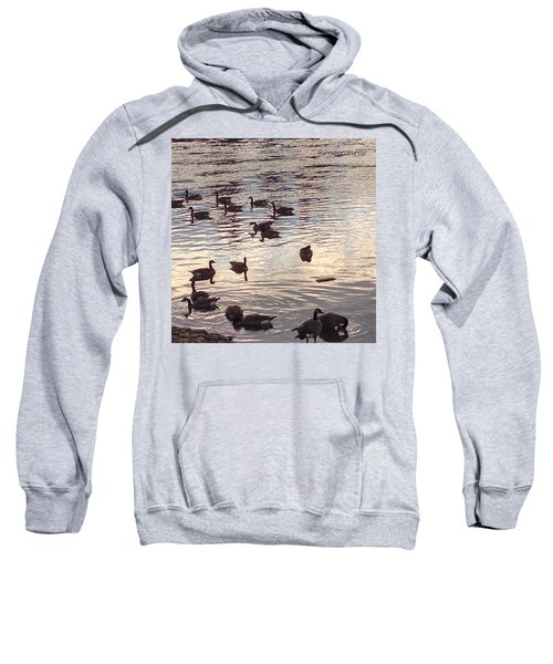 The Gathering - Willamette River Geese Sweatshirt