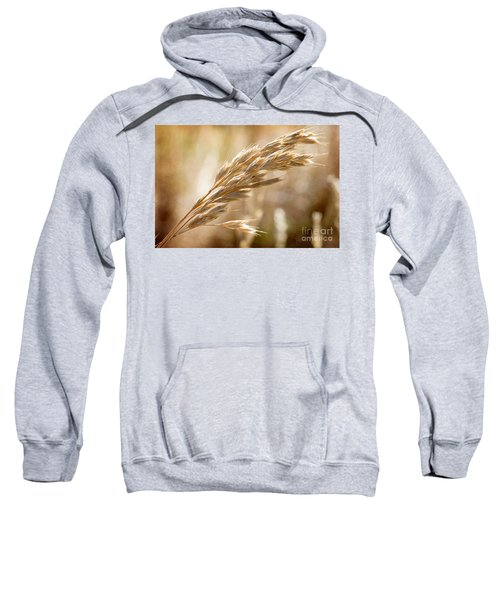 Sweatshirt featuring the photograph The Hot Gold Hush Of Noon by Linda Lees