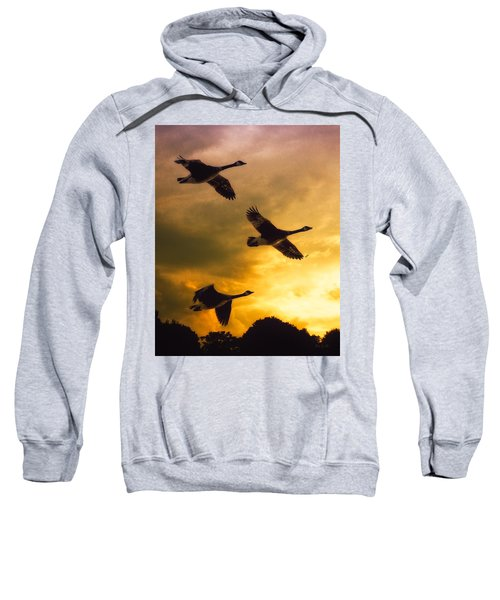 The Journey South Sweatshirt