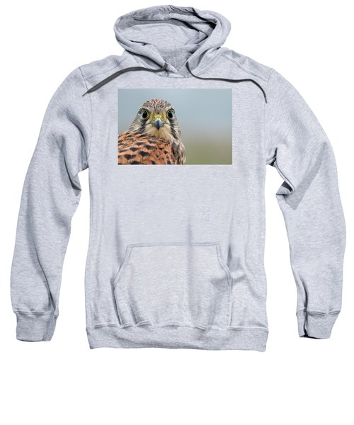 The Kestrel Face To Face Sweatshirt
