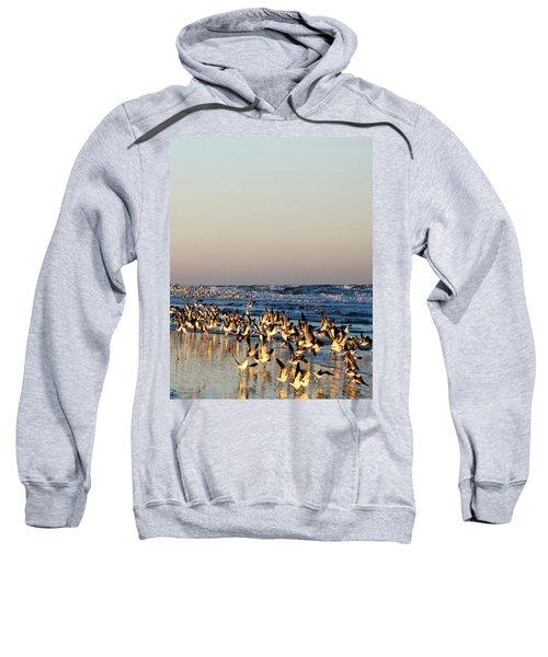The Landing Sweatshirt