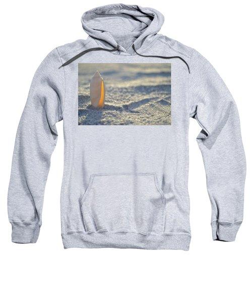 The Lettered Olive Sweatshirt
