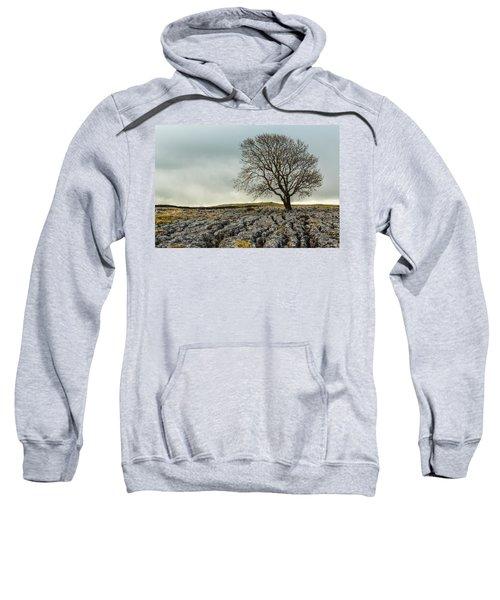 The Lonely Tree Sweatshirt