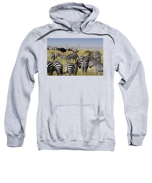 The Odd Couple Sweatshirt by Michele Burgess