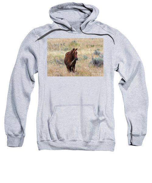 The Odd Couple Sweatshirt