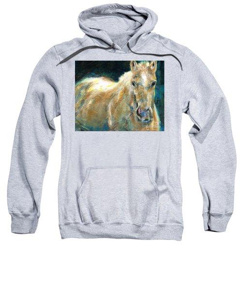 The Palomino Sweatshirt