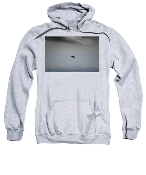 The Persevering Pelican Sweatshirt