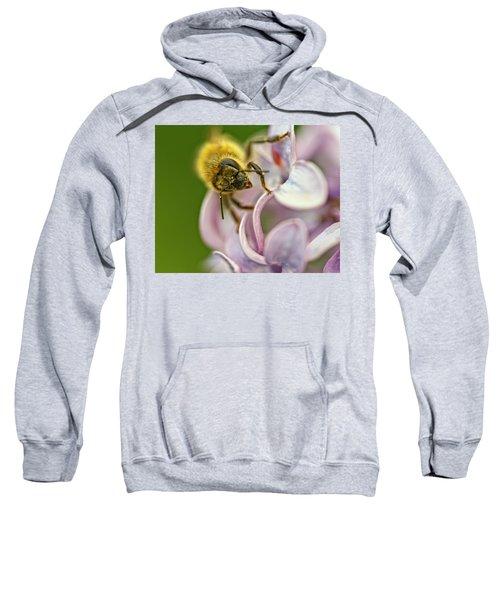 The Pollinator Sweatshirt