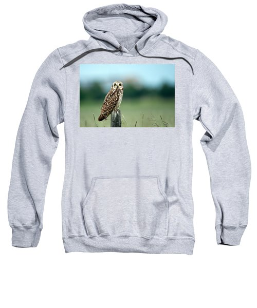 The Short-eared Owl  Sweatshirt