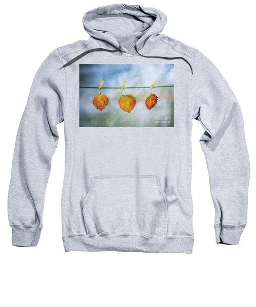 The Sun Shines Again Sweatshirt