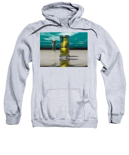 The Time Capsule Sweatshirt
